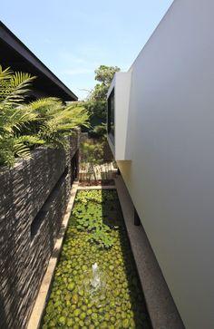 Casa Casuarinas by Metropolis