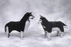 Siberian Huskies by P. Colman