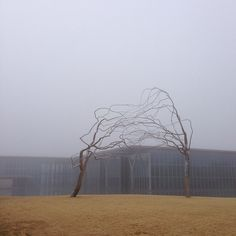 Conjoined by Roxy Paine @ the Fort Worth Modern