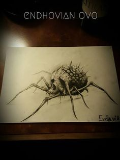 Drawing by Endhovian tattoo artist in Paris