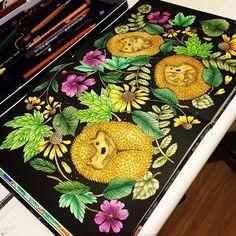 Livro book Blomster Mandala by Maria Trolle #boracolorirtop #divasdasartes #coloring #coloringforadults #coloringbook #blomstermandala #mariatrolle ❤️️