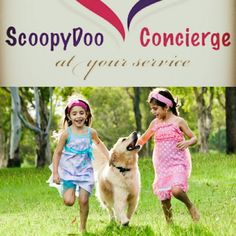 Hey everyone!! The holidays are coming fast! Schedule your yard cleanup so everyone can enjoy their holidays in a nice and clean environmental.  Call or text us at 602-321-3793 Www.scoopydooconcierge.com #scoopydooconcierge #petwasteremoval #petwaste #phoenix #scottsdale #cleanyard #cleanyardhappyyard