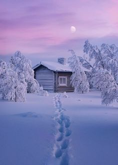 Find images and videos about winter, snow and landscape on We Heart It - the app to get lost in what you love. Winter Szenen, Winter Cabin, Winter Time, Winter Christmas, Snow Cabin, Winter Photography, Nature Photography, Snow Scenes, All Nature