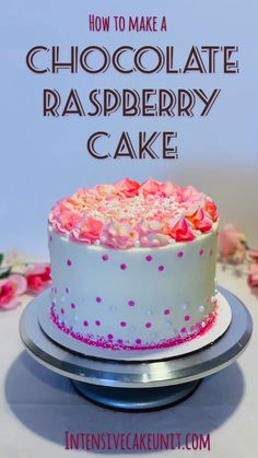 How to make an easy baby shower - chocolate raspberry-filled cake covered with white and pink frosting and a fun pink sprinkle mix! (Cake and frosting are both one-bowl recipes! Chocolate Cake Raspberry Filling, Raspberry Desserts, Cake Chocolate, Cake Decorating Videos, Birthday Cake Decorating, Baby Shower Kuchen, Homemade Birthday Cakes, Diy Birthday Cake, Cake Fillings
