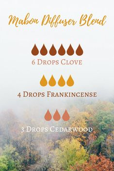 Mabon (Autumn Equinox) Essential Oil Diffuser Blend - The Witch of Lupine Hollow Fall Essential Oils, Helichrysum Essential Oil, Clove Essential Oil, Essential Oil Diffuser Blends, Young Living Essential Oils, Frankincense Essential Oil Uses, Essential Oil Mixtures, Mabon, Design Facebook