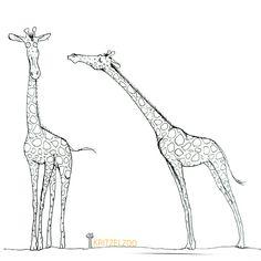 Pics Art, My Animal, Animal Drawings, Illustration, Animals, Pictures, Animales, Animaux, Illustrations