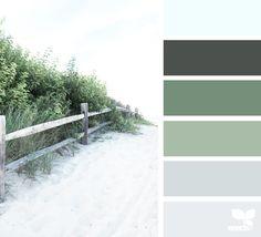 Design Seeds celebrate colors found in nature and the aesthetic of purposeful living. Design Seeds, Colour Pallette, Colour Schemes, Grey Palette, Color Concept, Palette Deco, Best Paint Colors, Color Balance, Traditional Bathroom