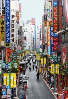 Tokyo Honeymoon: Weather and Travel Guide