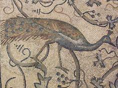 Patricolare del pavimento a mosaico dell'abside di - Descrizione dell'opera e mostre in corso - Arte.it