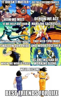DBZ on Friendship