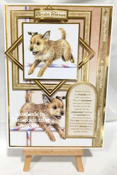 Book And Frame, Birthday Cards For Women, Dog Cards, Border Terrier, Little Books, Card Designs, Cat Life, Type 3, Cardmaking