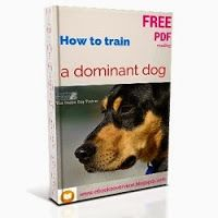 Is Your Dog Dominant? Fortunately, many trainers and behavior professionals now present concepts that focus on building a caring and happy relationship with your dog, instead of relying on dominance.