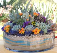 Check out these amazing DIY Succulent Arrangements. When we think about greenery most of us tend to forget the small delicate fragile succulents.San Diego local delivery onlyThis succulent arrangement comes in diameter x inches and comes with waves o Succulents In Glass, Succulent Bowls, Succulent Centerpieces, Growing Succulents, Succulents In Containers, Succulent Arrangements, Succulent Terrarium, Cacti And Succulents, Planting Succulents