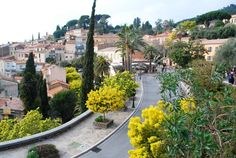 Bormes-les-Mimosas - - Var Provence, Camping 4 Etoiles, Le Mimosa, French Riviera, South Of France, Future Travel, Small Towns, Travel Destinations, Places To Go