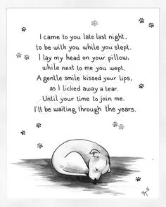 Dog Loss Quotes, Pet Quotes Dog, Pet Poems, Dog Quotes Love, Animal Quotes, Love For Animals Quotes, Dog Loss Poem, Sweet Dog Quotes, I Love Dogs
