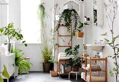 piante finte bagno