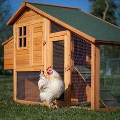 hen house @Loren Baysden