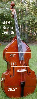 double bass dimensions - Google Search