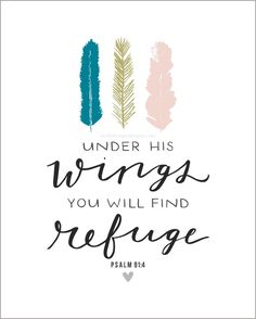 """Enthusiasts Of Love — """"Under His wings you will find refuge.""""  ~Psalm..."""