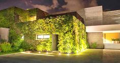 Los Angeles- based Ezequiel Farca Architects camouflaged the Vallarta with a lush green envelope of insulating plants.