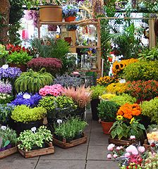 theLIST London Calling Flower market Columbia and Sunday morning