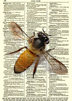 Bee Print on Antique Dictionary Page Bee by reimaginationprints, $10.00