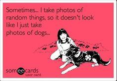 So I don't look like a crazy dog lady