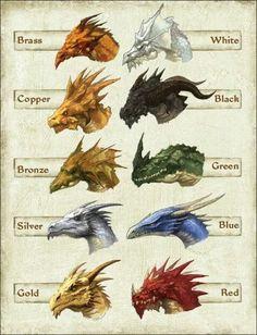 Renklere göre ejderhaların kafa şekilleri