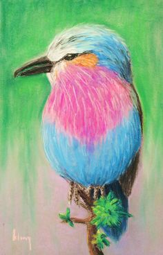 soft pastels beginners | soft pastel artwork by a 9 year old student learning…