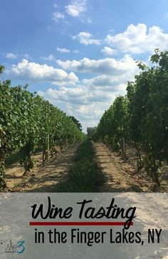 Suggestions on where to go wine tasting in the Finger Lakes region of New York, plus tips on other things to do in the area.