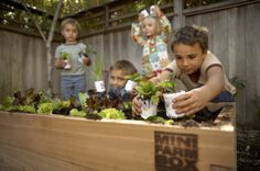 Mini farm box raised bed gardening kit for kids gardening Play Area Garden, Raised Garden Beds, Raised Bed, Outdoor Learning, Outdoor Education, Outdoor Play Areas, Garden Birthday, Mini Farm, Backyard For Kids