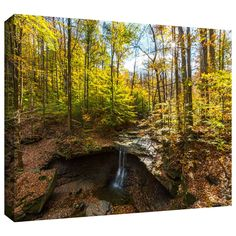 'Blue Hen Falls' by Cody York Photographic Print on Wrapped Canvas