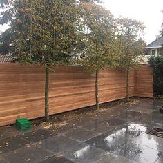 Poorten van hardhout en staal, mooi voor in elke tuin | Ronduithout.nl Modern Backyard, Sidewalk, Deck, Garden, Outdoor Decor, Outdoors, Instagram, Privacy Screens, Garten