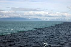 Baltic/North Sea divide, due to differing density.