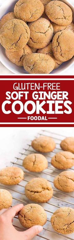 It's the holiday season and large batches of cookies are in order! What better than ginger cookies to warm you up with their spices? Bake these gluten-free soft ginger cookies to serve your guests or to give as presents. Get the recipe from Foodal now.