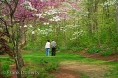 Take a stroll through the Edith J. Carrier Arboretum at James Madison University in Harrisonburg, VA. Frank Doherty Photography.
