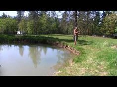 Permaculture Keyline Water Systems *** Permaculture seed wizard Don Tipping takes us on a 10 minute animated tour of the epic Seven Seeds Farm in the Siskiyou Mountains of Southern Oregon, USA. The farm was designed using Permaculture Principles and Keyline patterning. We follow the water system from top to bottom, and then the amazing downstream effects are revealed.