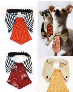 #Accesorios para #mascotas: #collar para #perros con #camisa y #corbata vieja  #HOWTO #DIY #reciclar #reutilizar