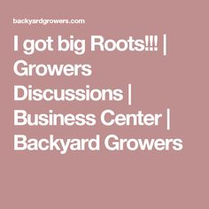I got big Roots!!! | Growers Discussions | Business Center | Backyard Growers