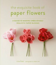 The Exquisite Book of Paper Flowers by Livia Cetti