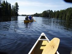 Canoe Lake - Algonquin Park, Ontario