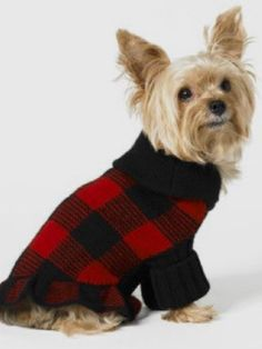 40bd68127 9 Best Posh Pups (clothing) images
