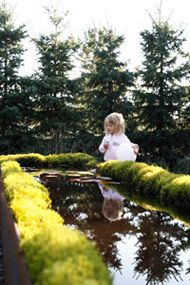 Wij Trädgårdar i Ockelbo  Skogens Trädgård av Ulf Nordfjell