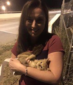 Une journaliste sauve un chaton