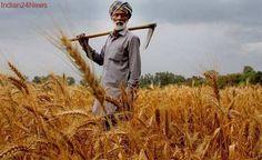 Tamil Nadu government has waived Rs 5,482 crore farmers loans so far: K A Sengottaiyan