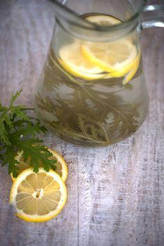 geranium herbata,