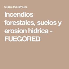 Incendios forestales, suelos y erosion hidrica - FUEGORED