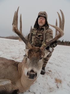 These are the kind of whitetail deer you'll find hunting in Alberta Canada. If you are looking for an outfitter visit our website at http://www.abhunting.com.  This massive whitetail buck was taking hunting with Alberta Bush Adventures. contact them at http://www.albertabushadventures.com for information about their whitetail deer hunts in Alberta, Canada