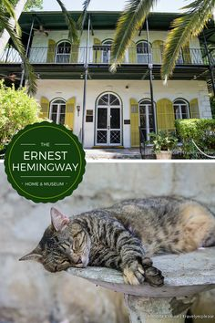 travelyesplease.com | The Ernest Hemingway Home and Museum (and Cats!) | Key West, Florida (Blog Post)