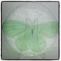 @gallerifinearts photo: #Vår i galleriet#glassfat#camillaprytz#sommerfugel#gallerifineart#tjuvholmen@camillaprytz@camillaprytz#glassfat#camillaprytz#sommerfugel#gallerifineart#tjuvholmen@camillaprytz . Velkommen til søndagsåpnet galleri! Moth, Insects, Instagram